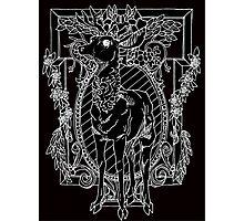 black stag Photographic Print