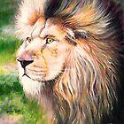 Lion by Jan Szymczuk