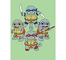 Teenage Mutant Ninja Squirtles  Photographic Print