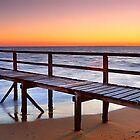 A Gift of Life, Portsea VIC by Chris Munn