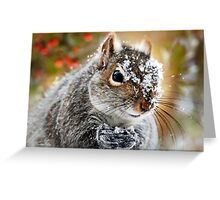 Wild Expedition Greeting Card