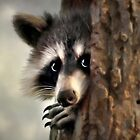 Conspicuous Bandit Raccoon by Christina Rollo