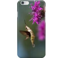 Hummingbird Moving Along iPhone Case/Skin
