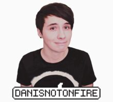 DANISNOTONFIRE by Neysa Tapanes