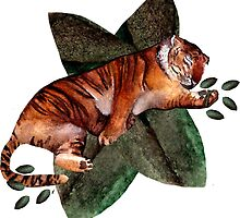 Sleeping Tiger by Toucano