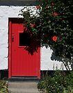 Red Door at Avoka by Yukondick
