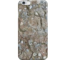 Orkney sandstone and lichen iPhone Case/Skin