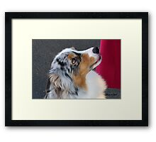 I'm Just Sayin' I Was Wrong, OK? Framed Print