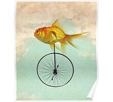 unicycle goldfish Poster