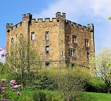 Durham Castle by Francis Drake