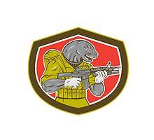 Navy Seal With Armalite Rifle Shield by patrimonio