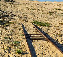 Railway to Nobbys Head by Werner Padarin