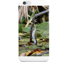 White-naped Honeyeater iPhone Case/Skin