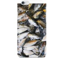Fish on Ice~COLD FISH iPhone Case/Skin