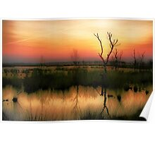 Sunset in the Wetland Fochteloerveen Poster