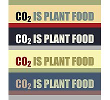 Carbon Dioxide Is Plant Food Photographic Print