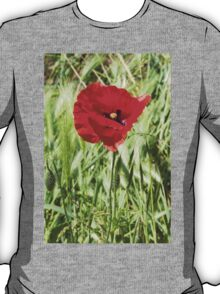 poppies in the field T-Shirt