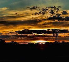 Outback Silhouette by Mark Cooper