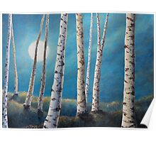 Silver Birch Moon Poster
