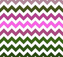 Pink Roses in Anzures 1 Chevron 1 by Christopher Johnson