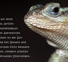Talking Animals - Umwelt 5  by Thomas F. Gehrke