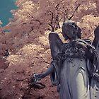 Angel by Andy Stafford