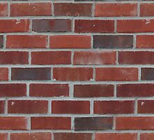 Brick Wall with Mortar - Red White by sitnica