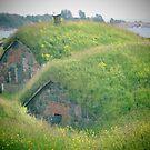 Hobbit Homes by M-EK