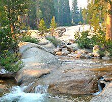 Mountain Creek Waterfall  by Gilnor