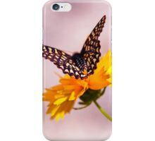 A Sip Of Coreopsis iPhone Case/Skin