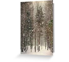 Scenic Snowfall Landscape Greeting Card
