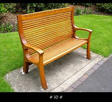 The 1000 Benches Project - # 10 # by Roberto Alamino