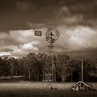 The Old Windmill by Karen Willshaw