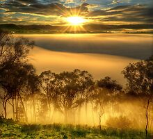 June sunrise, Ovens Valley by Kevin McGennan