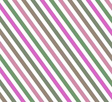 Pink Roses in Anzures 1 Stripes 1A by Christopher Johnson