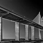 The Sidney Lanier Bridge by cclaude