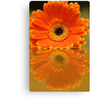 Double Orange Canvas Print