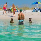 Beach Daze by matt1960
