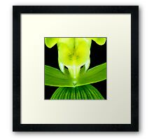 EEK! - Orchid Alien Discovery Framed Print
