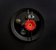 Zen Moments by artsandsoul