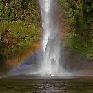 Rainbow at Bridel Veil Falls, New Zealand by AnnDixon