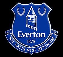 Everton logo 14/15 by detonator7
