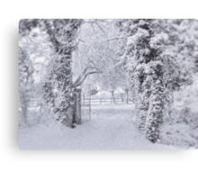 All Dressed in White !!! Canvas Print