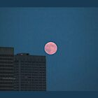 Super Moon - Ottawa - Ontario by Yannik Hay