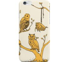 Clockwork Owls iPhone Case/Skin