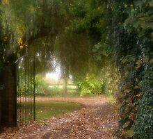 Pathway Home by AnnDixon