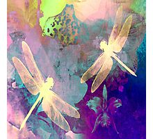 Dragonflies Dragonflies A Duvet Covers, Throw Pillows, Tote bag Photographic Print