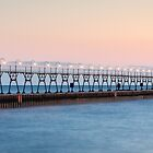 The Lights Turn On in South Haven by Robert Kelch, M.D.
