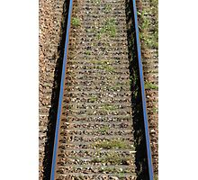 train rails Photographic Print