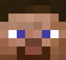 Minecraft Steve Head by Legitbit